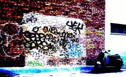 photo sony 084 (1)